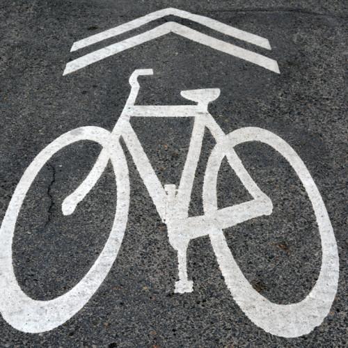 Bike Law Sharrow Street Marking